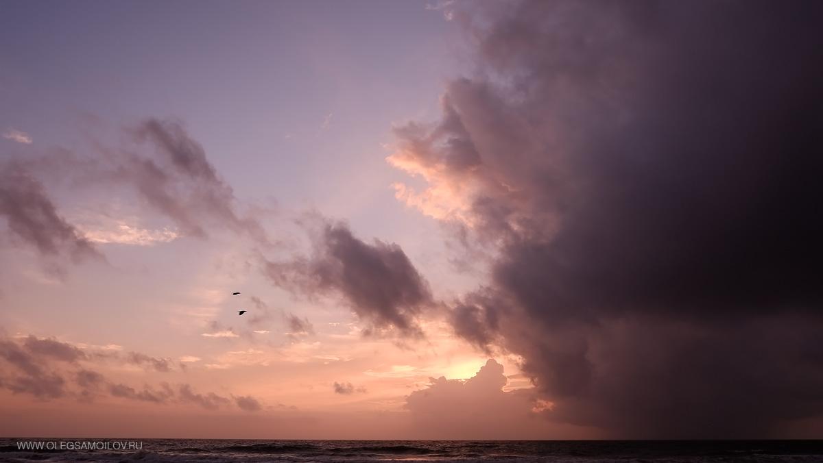 фотографии путешествующего фотографа со ШриЛанки острова в Индийском океане - фотограф Олег Самойлова